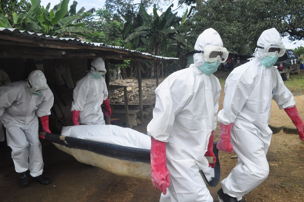 ebola (Array)