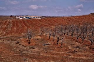 észak-korea szárazság (Array)