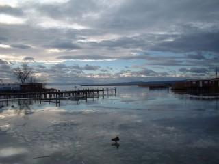 fertő tó (Array)