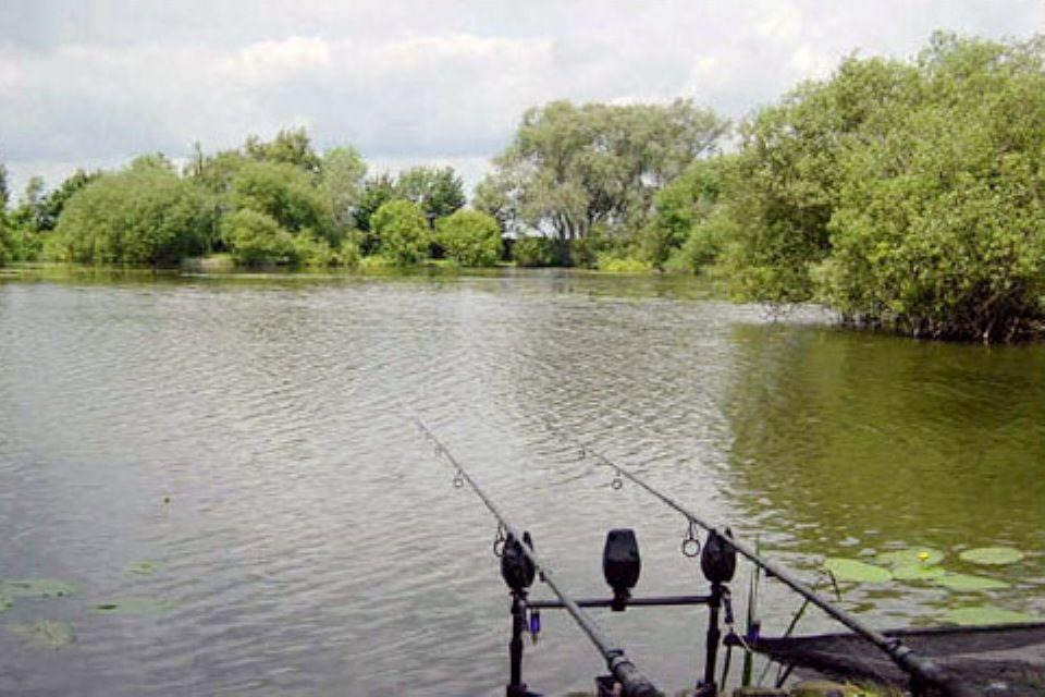 horgásztó (Array)