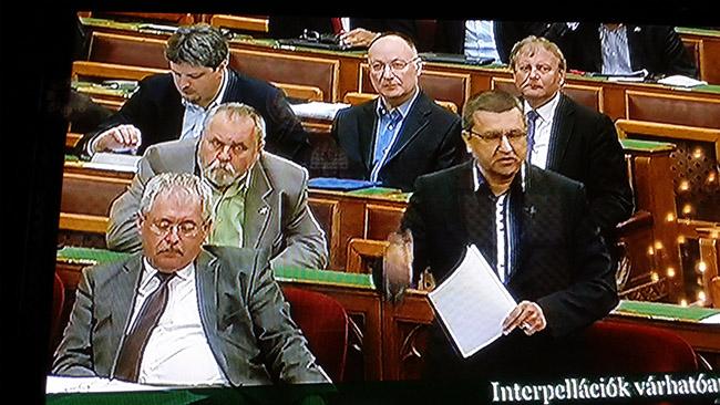 interpellációk, parlament (Array)