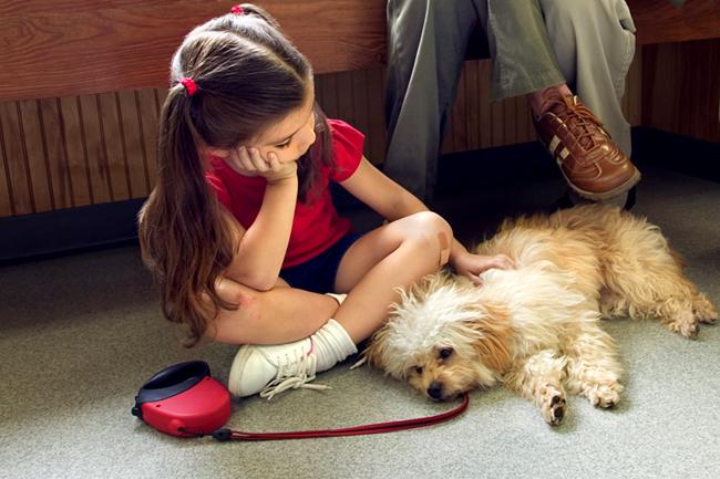 kutya, kislány, kutya gazda (Array)