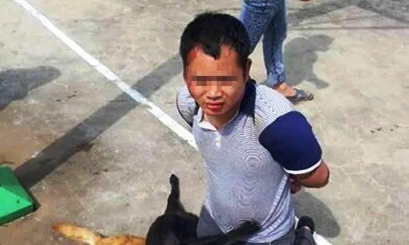 meglincslet kutyagyilkos 1 (Array)
