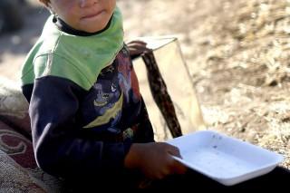 menekült fiú (Array)