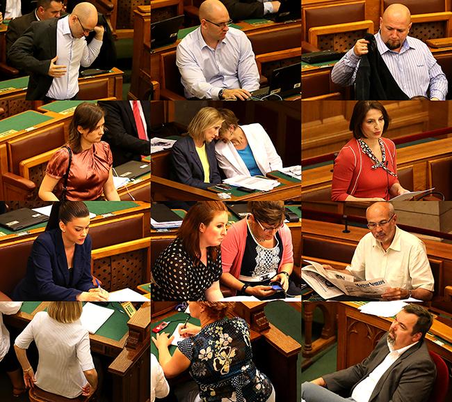 parlament Június 15 montázs, nyár (Array)