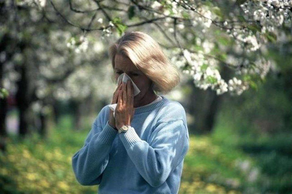 pollen(2)(960x640).jpg (Array)