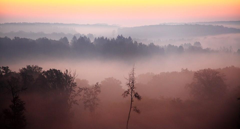 Köd (Array)