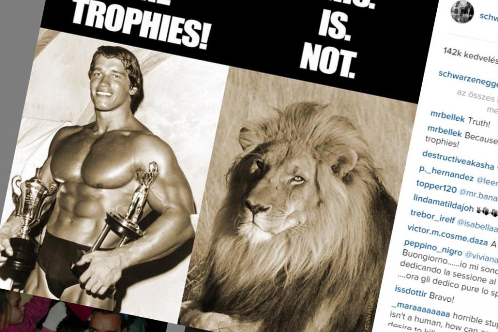 Schwarzenegger, Cecil (Array)