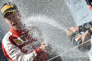 Sebastian Vettel (Array)