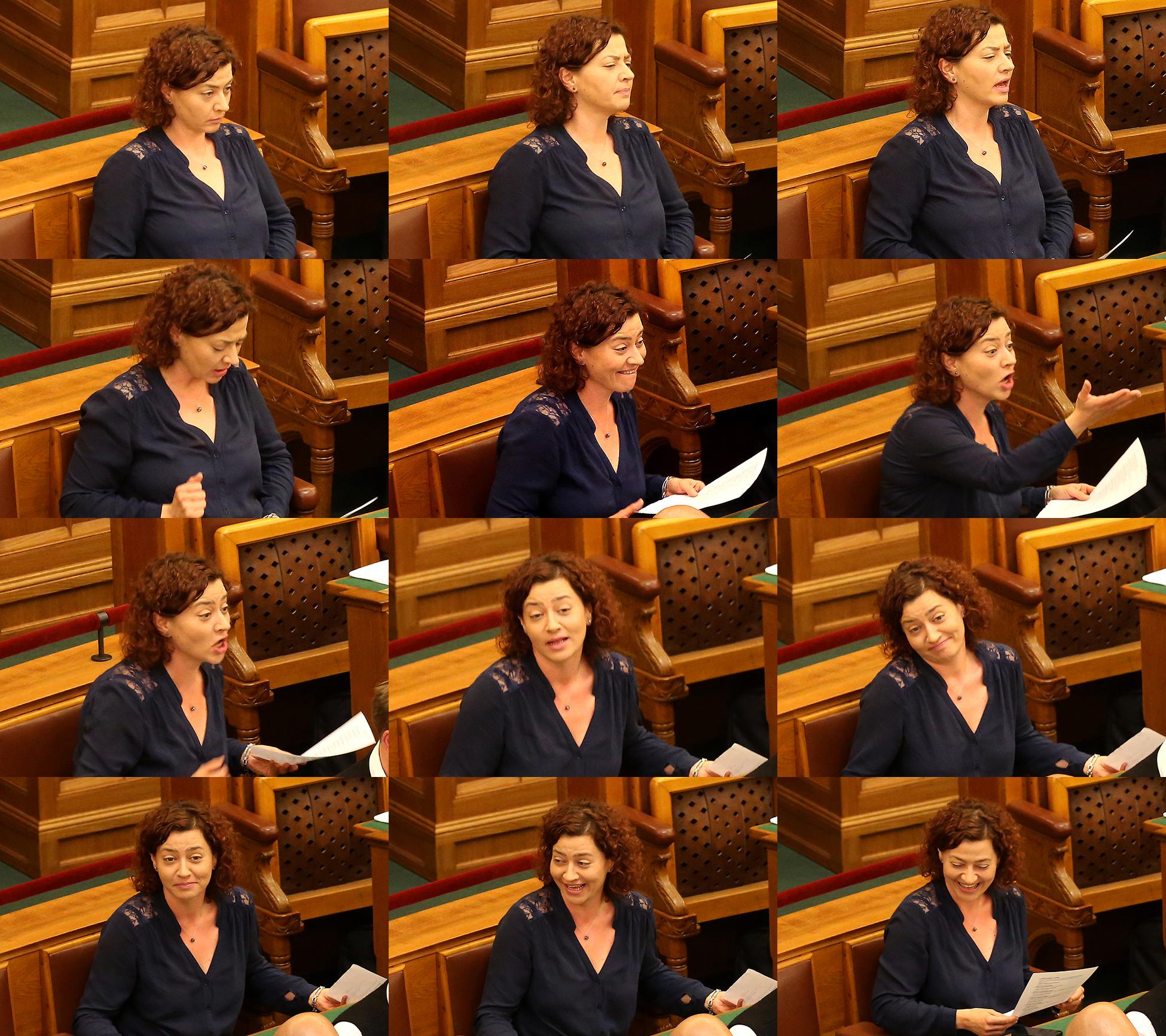 Vadai parlament (Array)