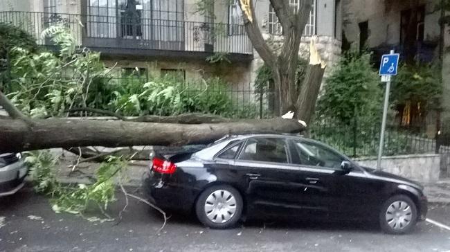 ág utca autó (Array)