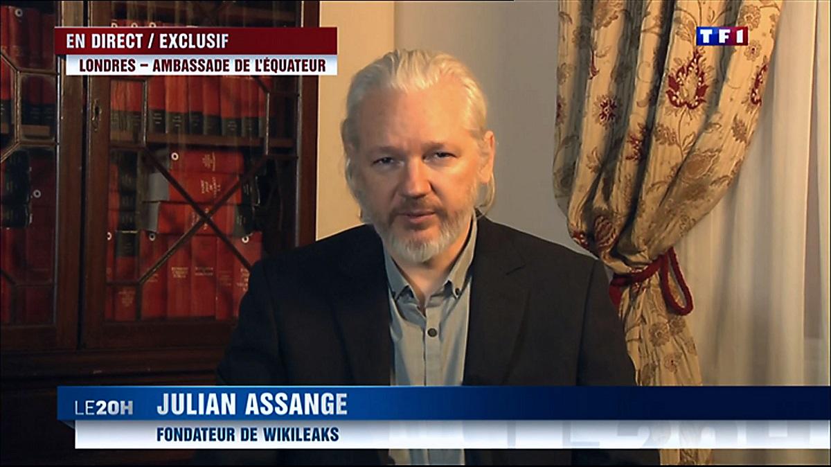 assange (Array)