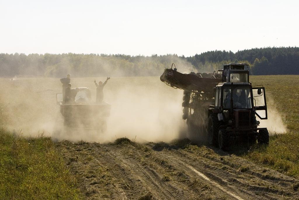 betakarítás fehéroroszországban (Array)