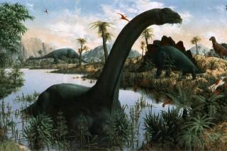 dinoszaurusz (Array)