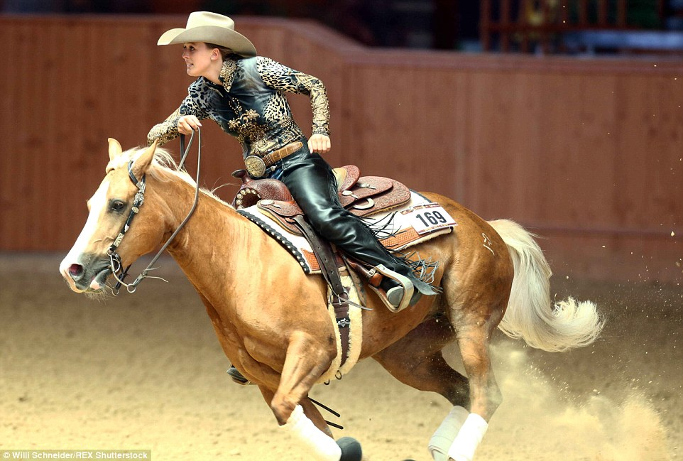 Gina Wild Pferd