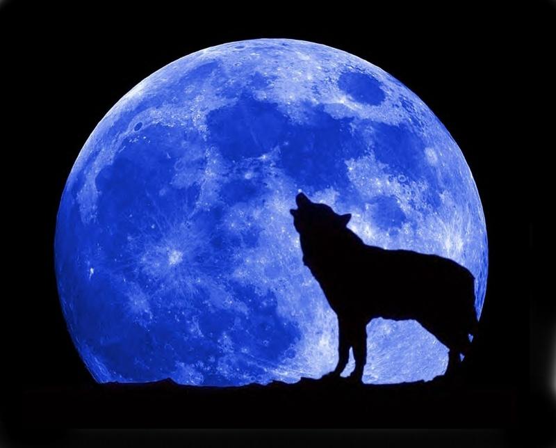 kék hold (Array)