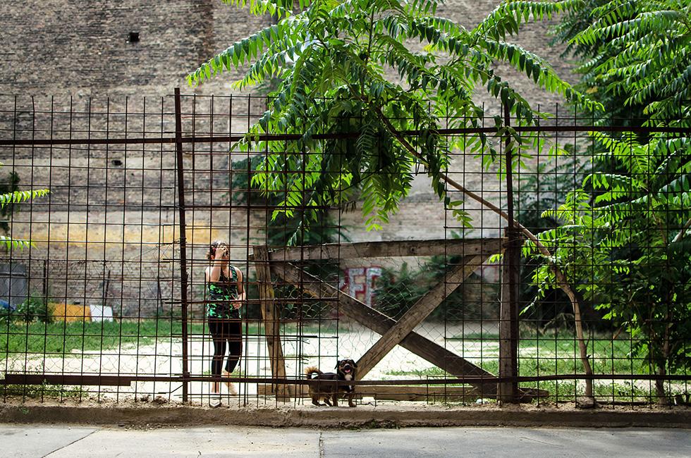 kerítés (Array)