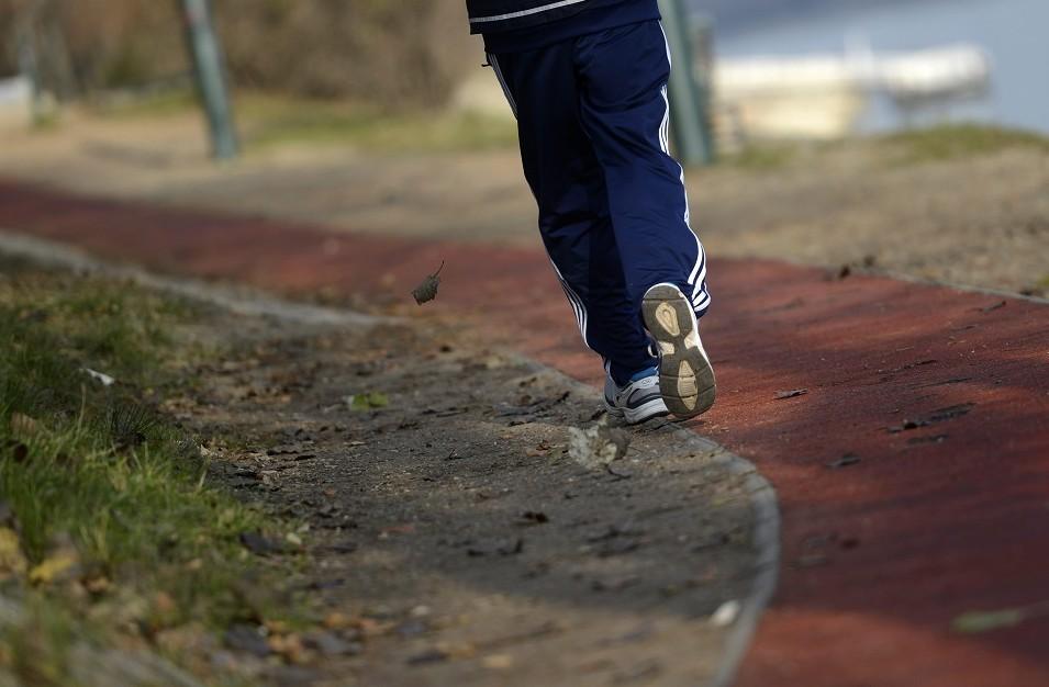 margitszigeti futókör (Array)
