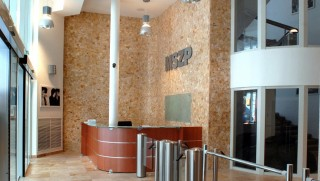 mszp székház (Array)