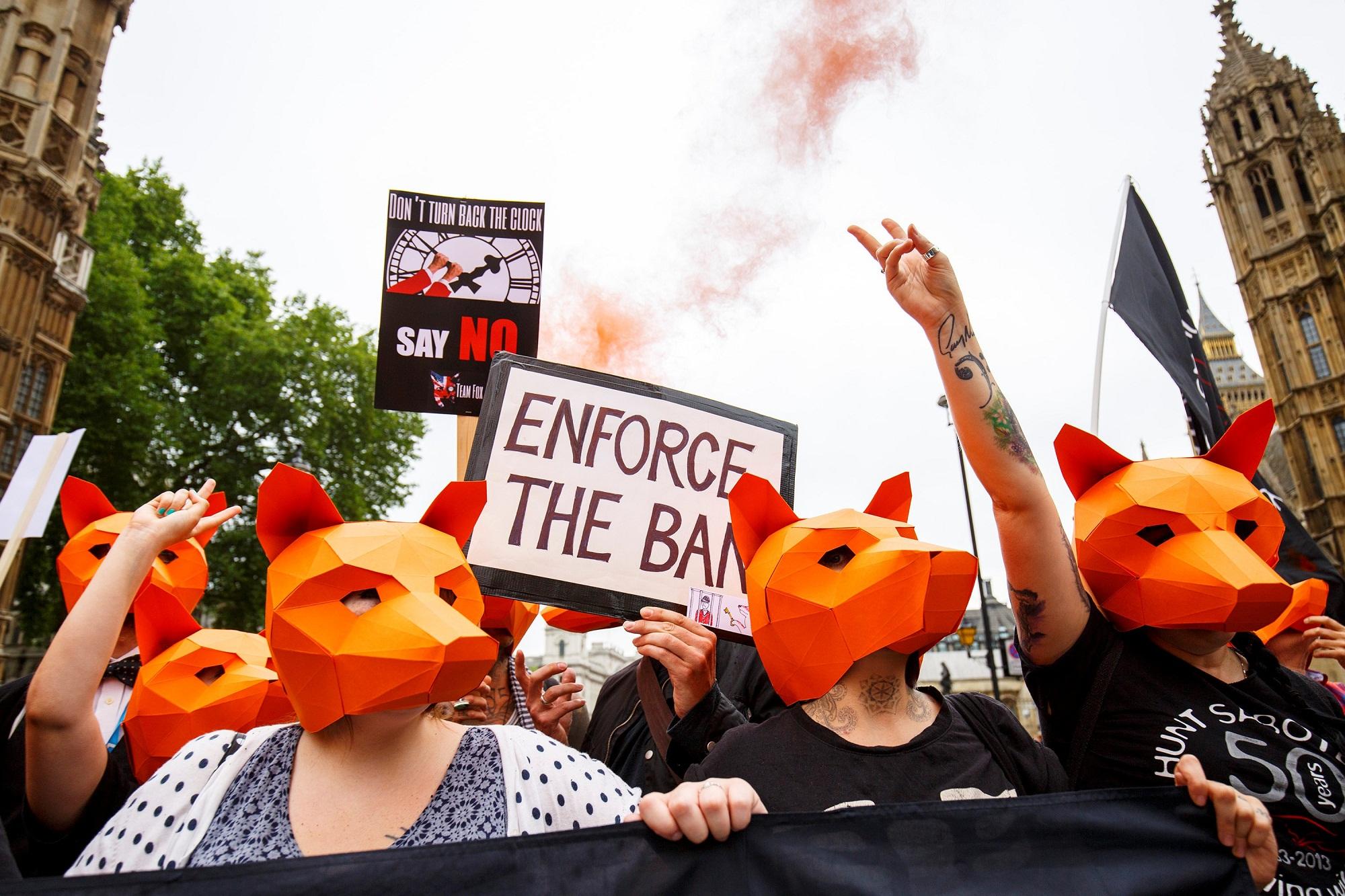 rókavadászat tüntetés (Array)