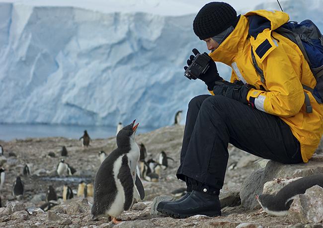 Antarktisz (Array)