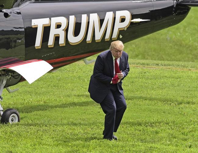 Donald Trump (Array)