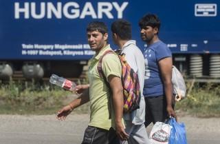 Menekültek Kiskunhalason  (Array)