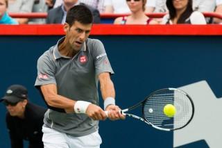 Novak Djokovic (Array)