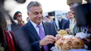 Orbán csipeget (Array)