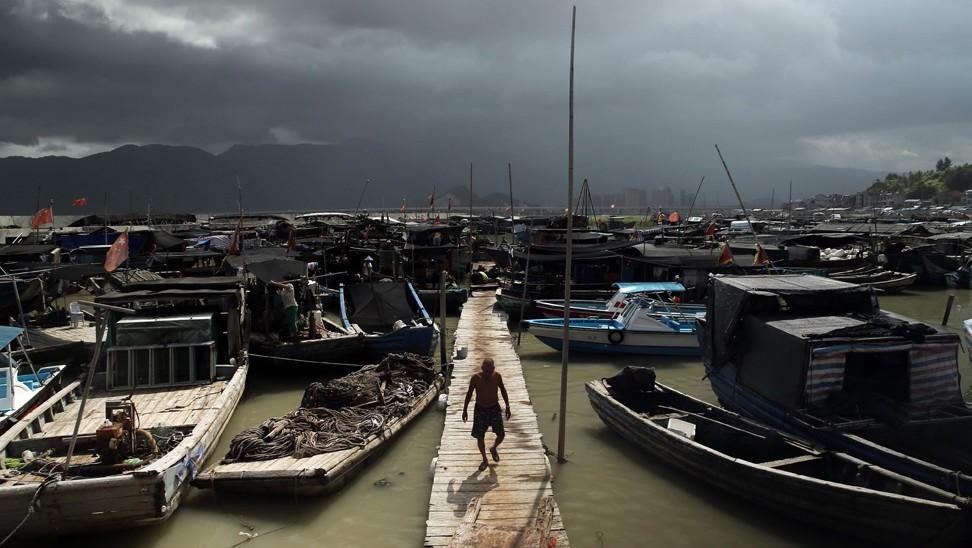 Tajfun(960x640).jpg (Array)
