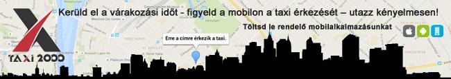 Taxi2000 (Array)