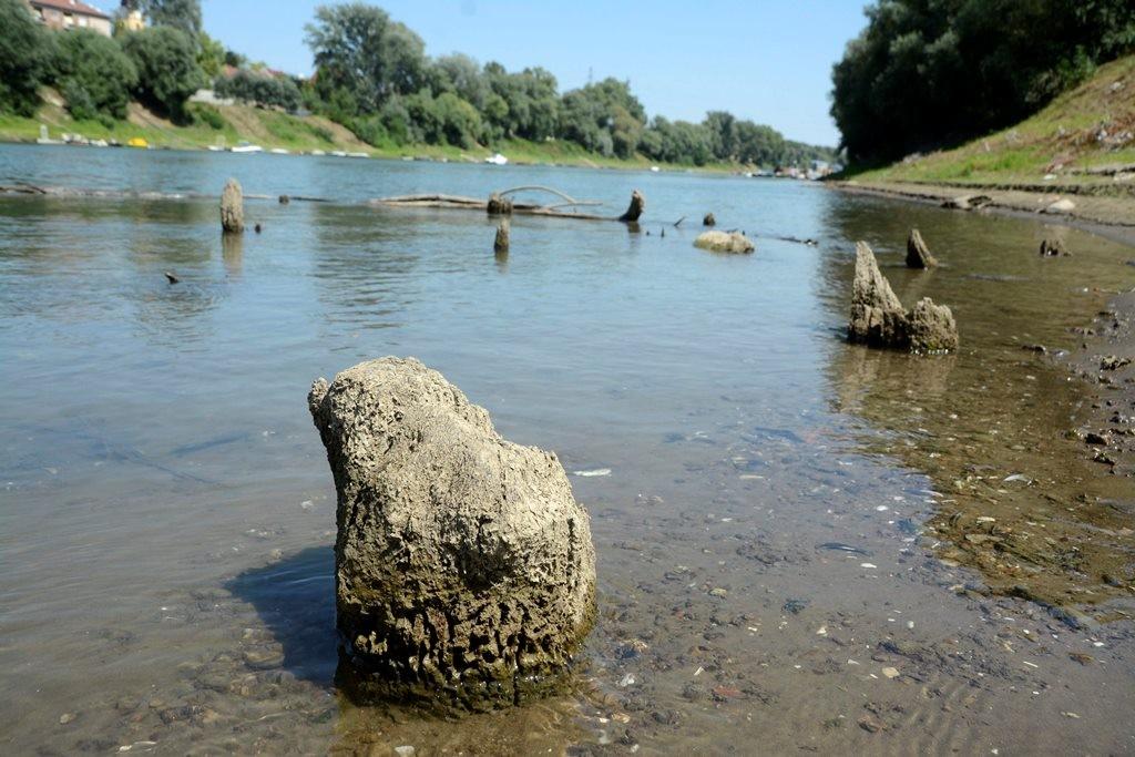 Törökkori fahíd cölöpjei (Array)