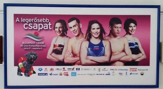Úszó plakát 2005 (Array)