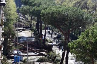 Vihar Firenzében (Array)