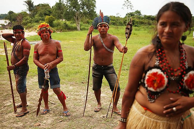 amazonas (Array)