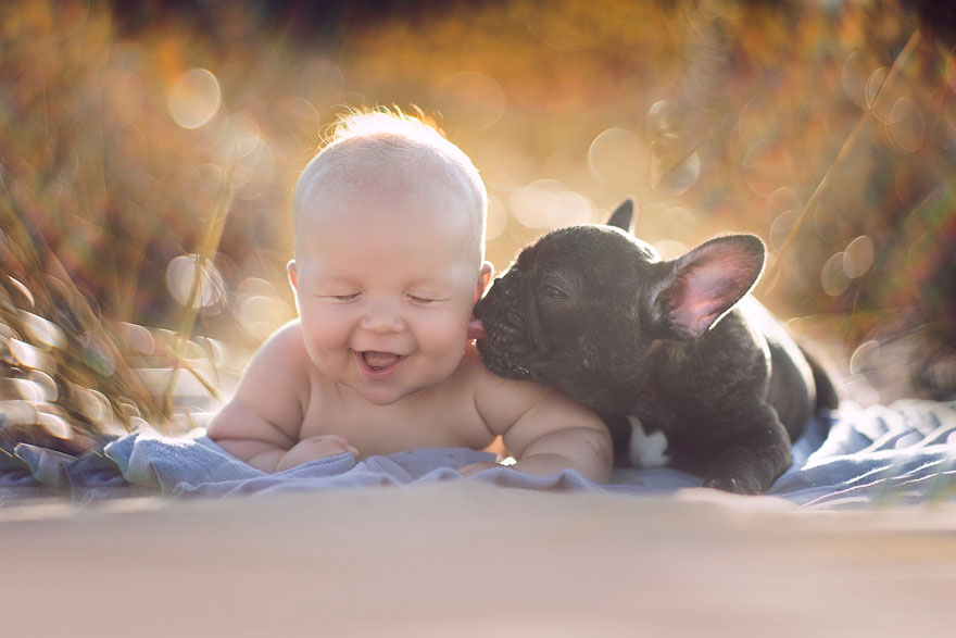 baba és kiskutya 1 (Array)