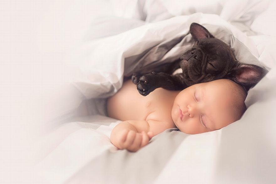 baba és kiskutya 3 (Array)