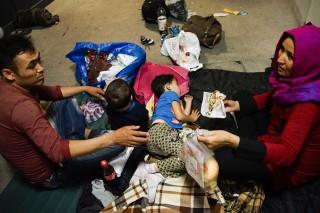 bevándorló, menekült (Array)