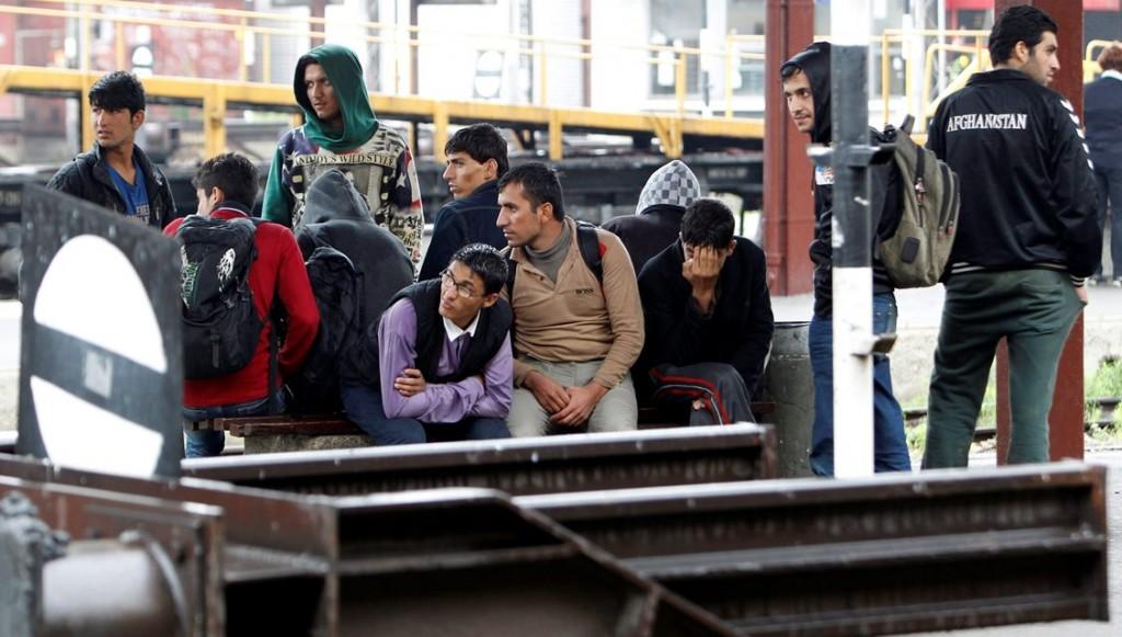 menekültek belgrádban (Array)