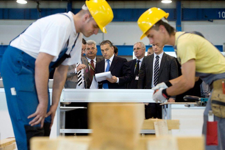 szakmunkás képzés (Array)