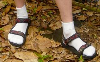 szandál zoknival (Array)