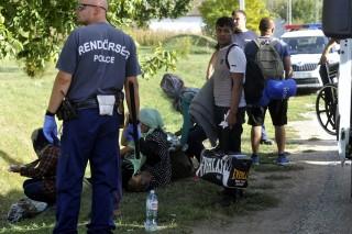 Illocska, 2015. szeptember 17. Rendõri intézkedés illegális bevándorlókkal szemben a Baranya megyei Illocskán 2015. szeptember 17-én. Kétszáz migránssal szemben intézkedtek Baranyában. A külföldiek a jogszerû magyarországi tartózkodásukat nem tudták igazolni, így a rendõrök elõállították õket, és idegenrendészeti eljárást kezdeményeztek velük szemben. MTI Fotó: Lendvai Péter
