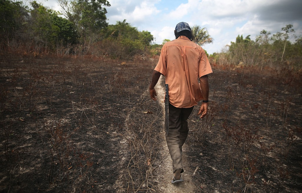 PEDRO DO ROSARIO, BRAZIL - NOVEMBER 20:  Community leader Luiz Lopes walks while giving a tour of deforestation near homes in the Imbiral quilombo, which community members say is being heavily encroached upon by illegal logging and cattle ranching, in the Amazon basin on November 20, 2014 in the Pedro do Rosario municipality of Brazil. Quilombos are communities usually made up primarily of descendants of escaped slaves who fled to rural areas in Brazil and formed autonomous communities. Residents of the Imbiral quilombo, which is officially recognized, say illegal logging and ranching has rapidly depleted their ancestral territory and some community members have received death threats for resisting deforestation. The non-governmental group Imazon recently warned that deforestation in Brazil's Amazon basin skyrocketed 450 percent in October of this year compared with the same month last year. The United Nations climate conference is scheduled to begin December 1 in neighboring Peru.  (Photo by Mario Tama/Getty Images)