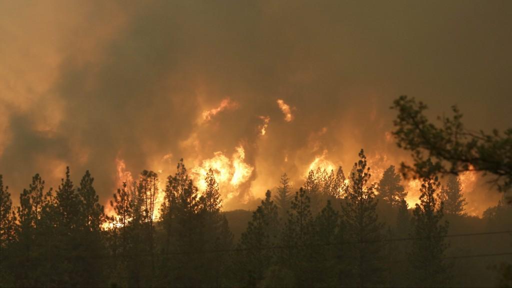 Sheep Ranch, 2015. szeptember 14. Erdõtûz pusztít a Kalifornia állambeli Sheep Ranch környékén 2015. szeptember 13-án. Ezreknek kellett elhagyniuk otthonukat és csaknem kétszáz épület leégett a kiterjedt erdõtüzek miatt az amerikai államban. (MTI/AP/Rich Pedroncelli)
