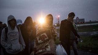 Hegyeshalom, 2015. szeptember 5.Busszal érkezett illegális bevándorlók a hegyeshalmi magyar-osztrák határ osztrák oldalán 2015. szeptember 5-én. A központi operatív törzs úgy döntött, hogy az éjszaka folyamán autóbuszokat vezényel a Keleti pályaudvarhoz és a M1-es autópályához, és felajánlják az ott tartózkodó bevándorlóknak, hogy a hegyeshalmi határátlépési ponthoz szállítják őket. Ausztria a szükséghelyzet miatt beengedi a Magyarországról érkező migránsokat.MTI Fotó: Mohai Balázs