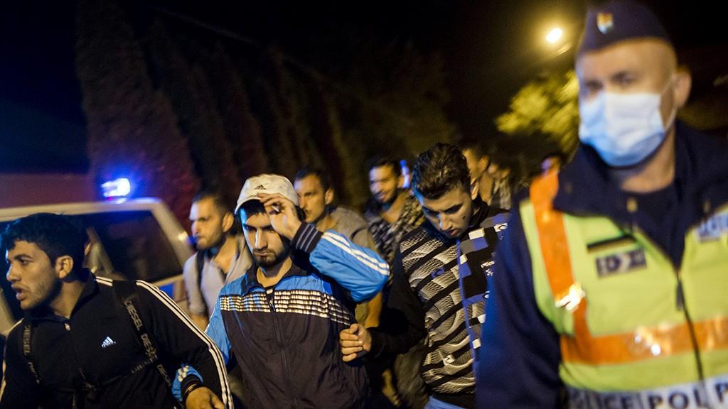 Röszke, 2015. szeptember 12.Migránsokat Röszkén, miután több százan elindultak a gyűjtőpontról 2015. szeptember 12-én késő este. A tömeg egy ideig a síneken haladt, majd egy kukoricáson keresztül egy úthoz értek.MTI Fotó: Mohai Balázs