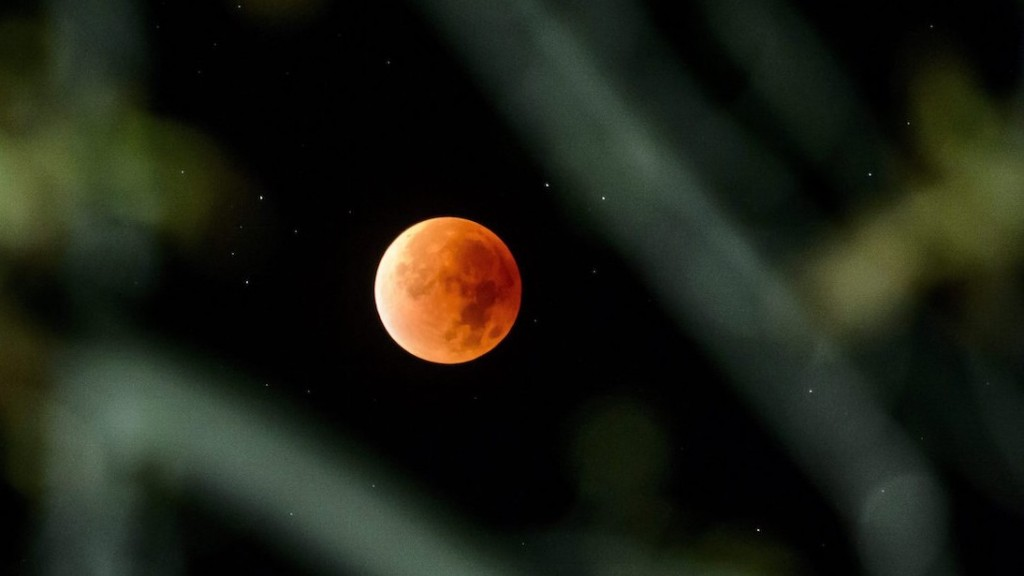 Salgótarján, 2015. szeptember 28. Teljes holdfogyatkozás Salgótarján Salgóbánya városrészéből, faágak közül fotózva 2015. szeptember 28-án. MTI Fotó: Komka Péter