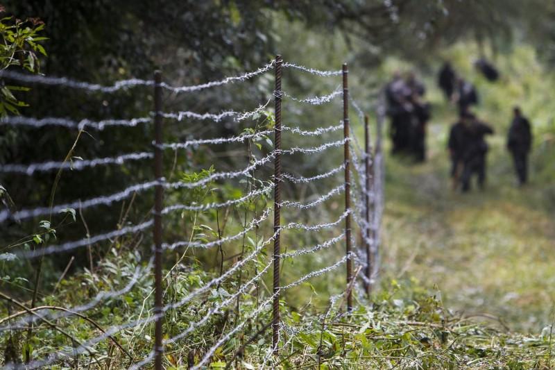Zákány, 2015. szeptember 24. Katonák ideiglenes határzárat építenek a horvát-magyar határon, Zákány közelében 2015. szeptember 24-én. MTI Fotó: Varga György