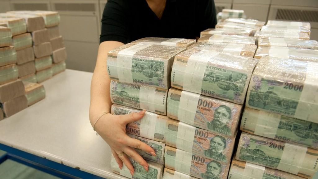Budapest, 2012. február 7. Húszezer forintos bankjegytömbök a Magyar Nemzeti Bank (MNB) Logisztikai Központjában, ahol automata rendszeren átválogatják és ellenõrzik a papírpénzeket, majd a selejteket bedarálják és téglává préselik. A 3-4 hét alatt összegyûlt mintegy 4 tonna pénzbrikettet pályázat alapján rászoruló, közhasznú szervezetek számára ajánlják fel fûtési célra. A mostani szállítmányt a miskolci autista alapítvány bentlakásos intézményébe szállítják. MTI Fotó: Koszticsák Szilárd