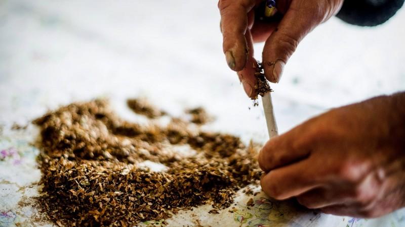 Kelet-Magyarország, 2013. szeptember 24.Kiszárított, átrostált dohányleveleket cigarettahüvelybe tölt egy férfi egy kelet-magyarországi településen 2013. szeptember 23-án. A térség településein egyre többen ültetnek néhány dohánytövet, mert nem tudnak kétórányi bérnek megfelelő összeget kifizetni egy doboz cigarettáért és így maguk készítik el cigarettaadagjukat lényegesen olcsóbban. Egy dohánytő gondozás nélkül is 16-18 levelet növeszt, amelyekből durván 700 gramm száraz dohány nyerhető. A trafikokban kapható cigaretták száljában 0,9-1 gramm dohány van, tehát egy tő dohányból nagyjából 700 szál, körülbelül 36 doboznyi cigaretta készíthető.MTI Fotó: Balázs Attila